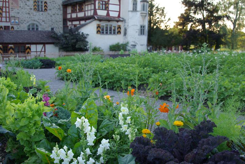 pflanzgarten-idee