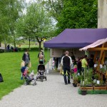 pflanzgarten_schloss_hegi_setzlingsmarkt_imgp7516_web