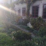 Pflanzgarten_Schloss_Hegi_Herbst_IMG_3692_web